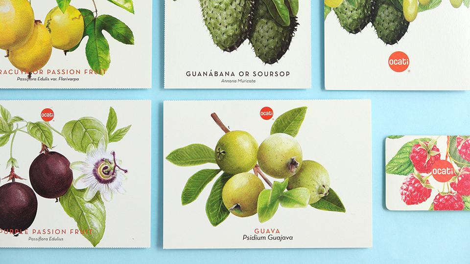 Ocati水果包装设计 欣赏-第4张