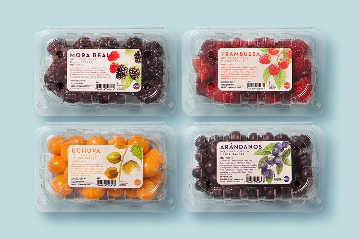 Ocati水果包装设计 欣赏-第2张