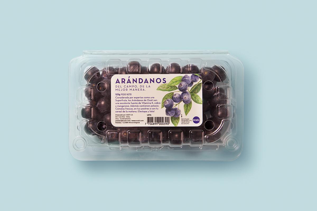 Ocati水果包装设计 欣赏-第7张
