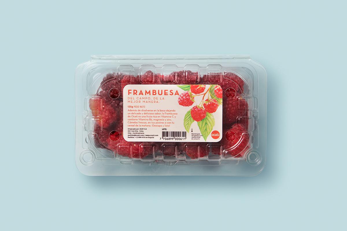 Ocati水果包装设计 欣赏-第8张