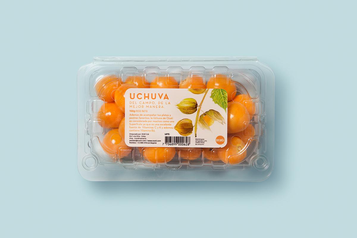 Ocati水果包装设计 欣赏-第6张