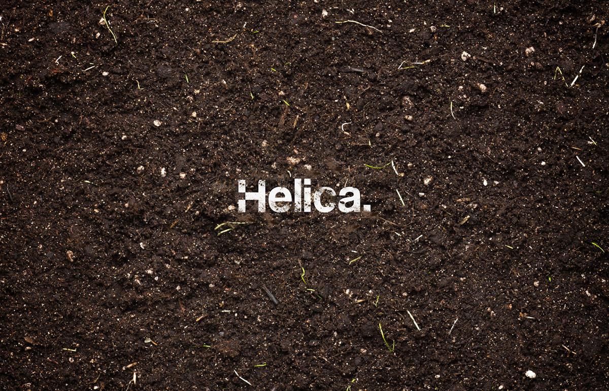 Helica.视觉识别 欣赏-第23张