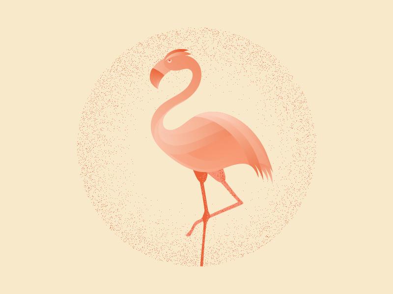 火烈鸟元素logo 欣赏-第19张