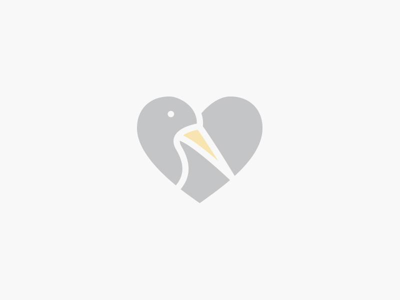 天鹅元素logo 欣赏-第6张
