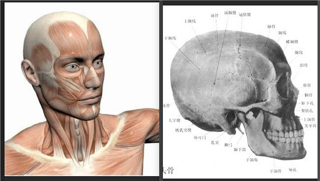 Ps用中性灰磨皮塑造剔透的人物肤色 教程-第6张