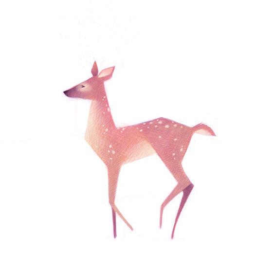 清新可爱动物艺术插画 欣赏-第9张