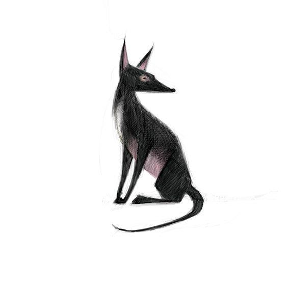 清新可爱动物艺术插画 欣赏-第17张
