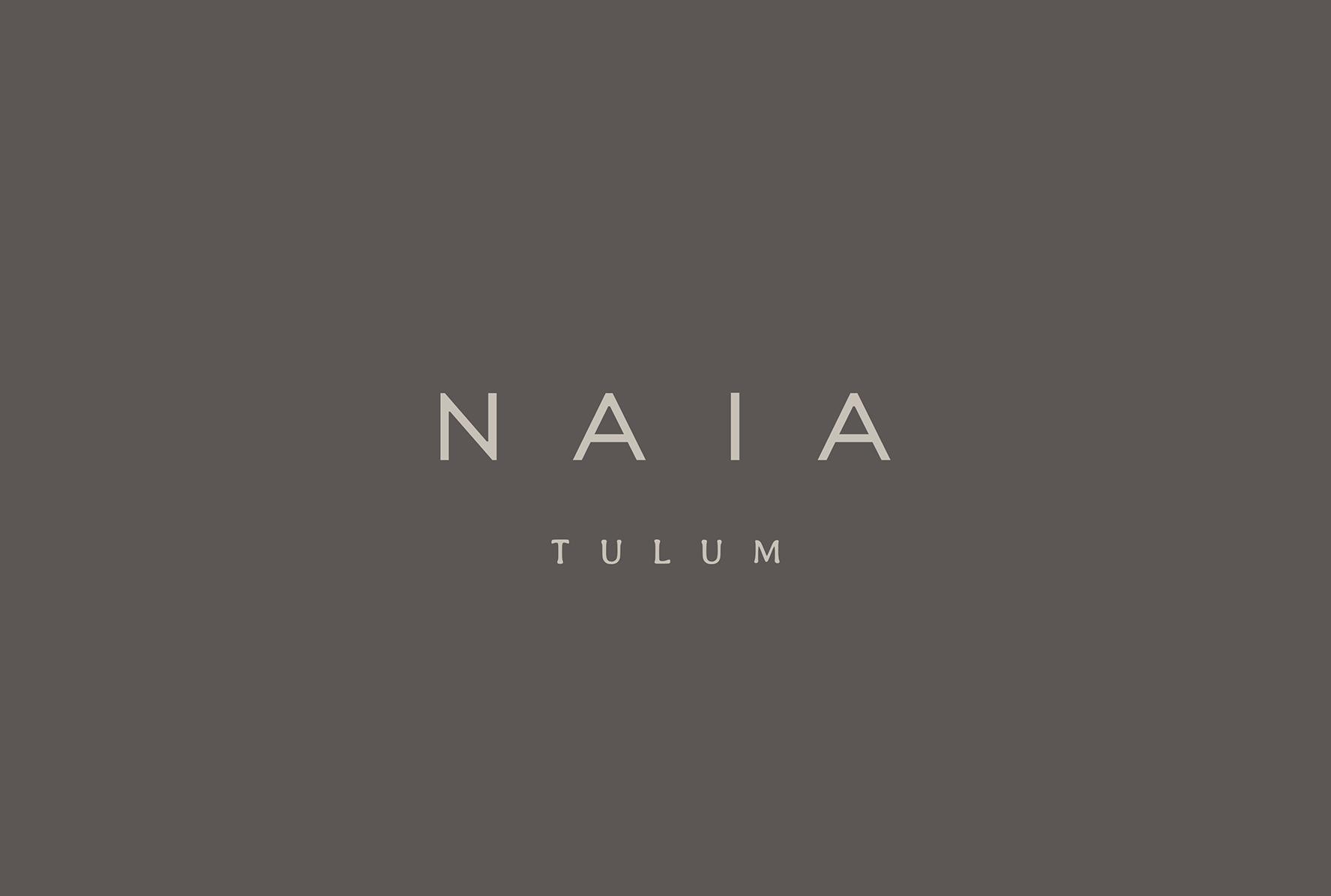 Naia一家精品店的品牌设计 欣赏-第2张