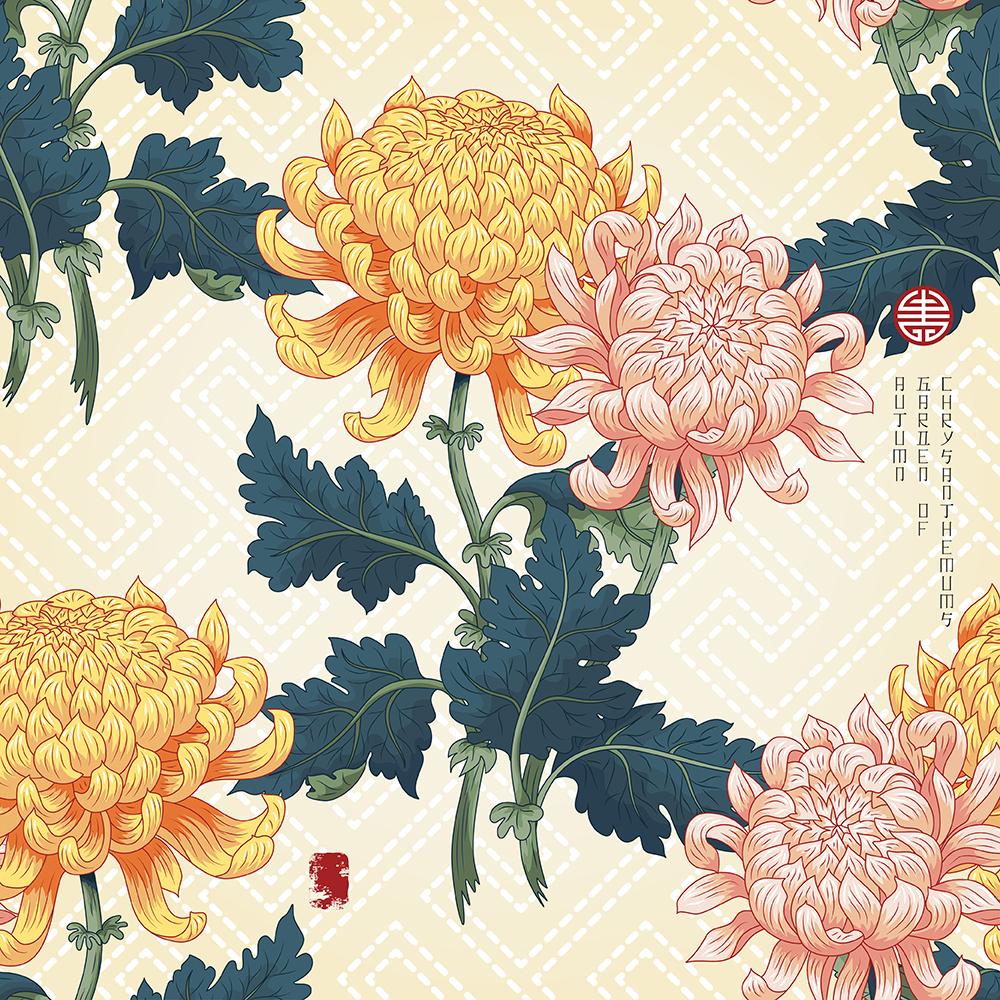 20张古典中国风手绘菊花矢量背景 元素-第13张