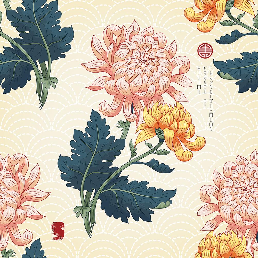 20张古典中国风手绘菊花矢量背景 元素-第9张