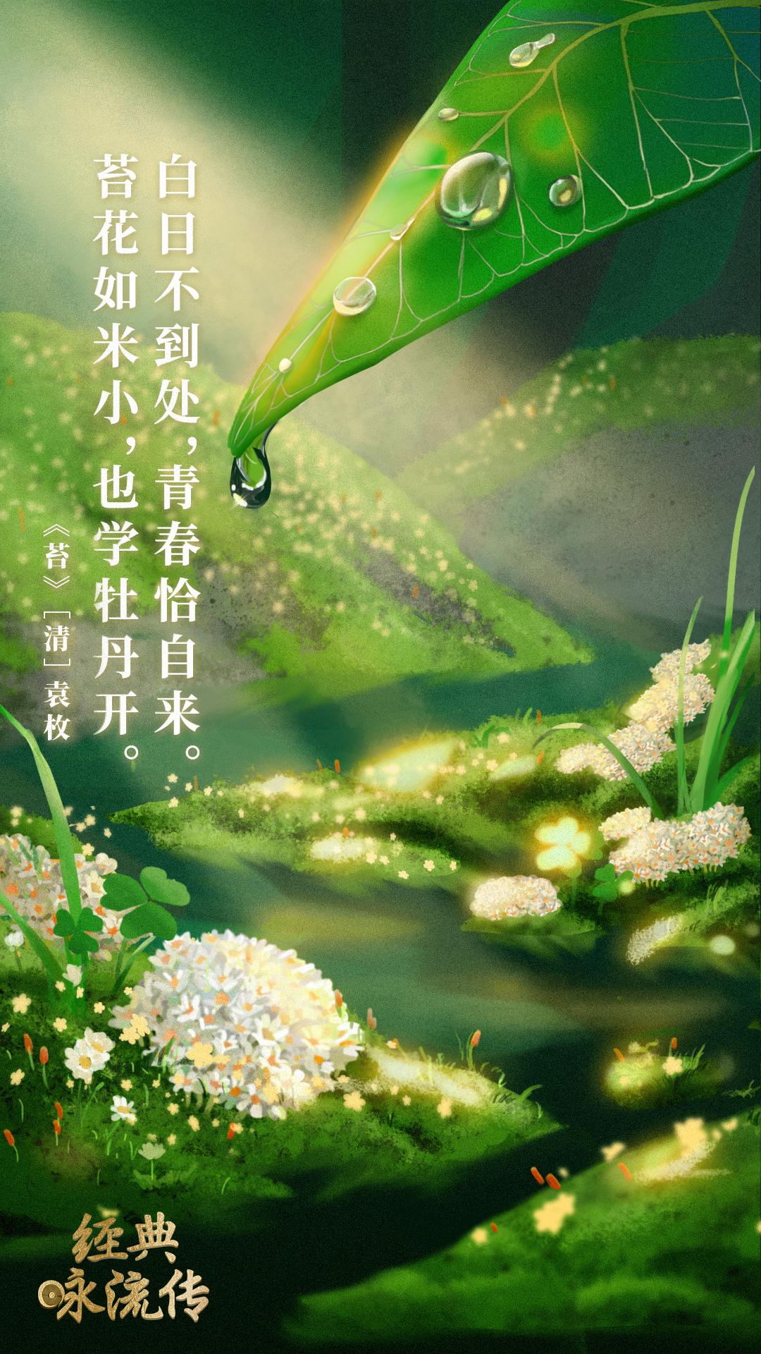 《经典咏流传》诗词意境海报合集 欣赏-第25张