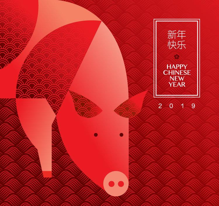 2019猪年新年春节创意矢量素材 元素-第4张