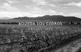 """葡萄酒""""Bodega Los Cedros""""品牌视觉形象设计"""