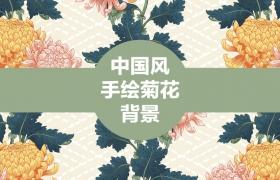 20张古典中国风手绘菊花矢量背景