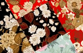 10张中国风工笔高档复古花卉矢量背景