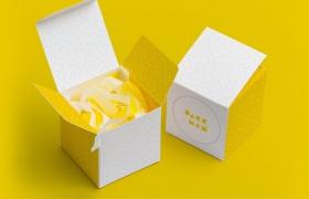 方形纸盒样机